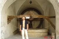 На фоні колодязя Олеського замку
