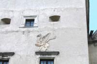 Грифон на стіні вежі, Свірж