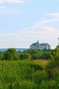 Олеський замок на відстані