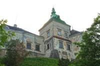 Замки Львовской  области - Олесский замок